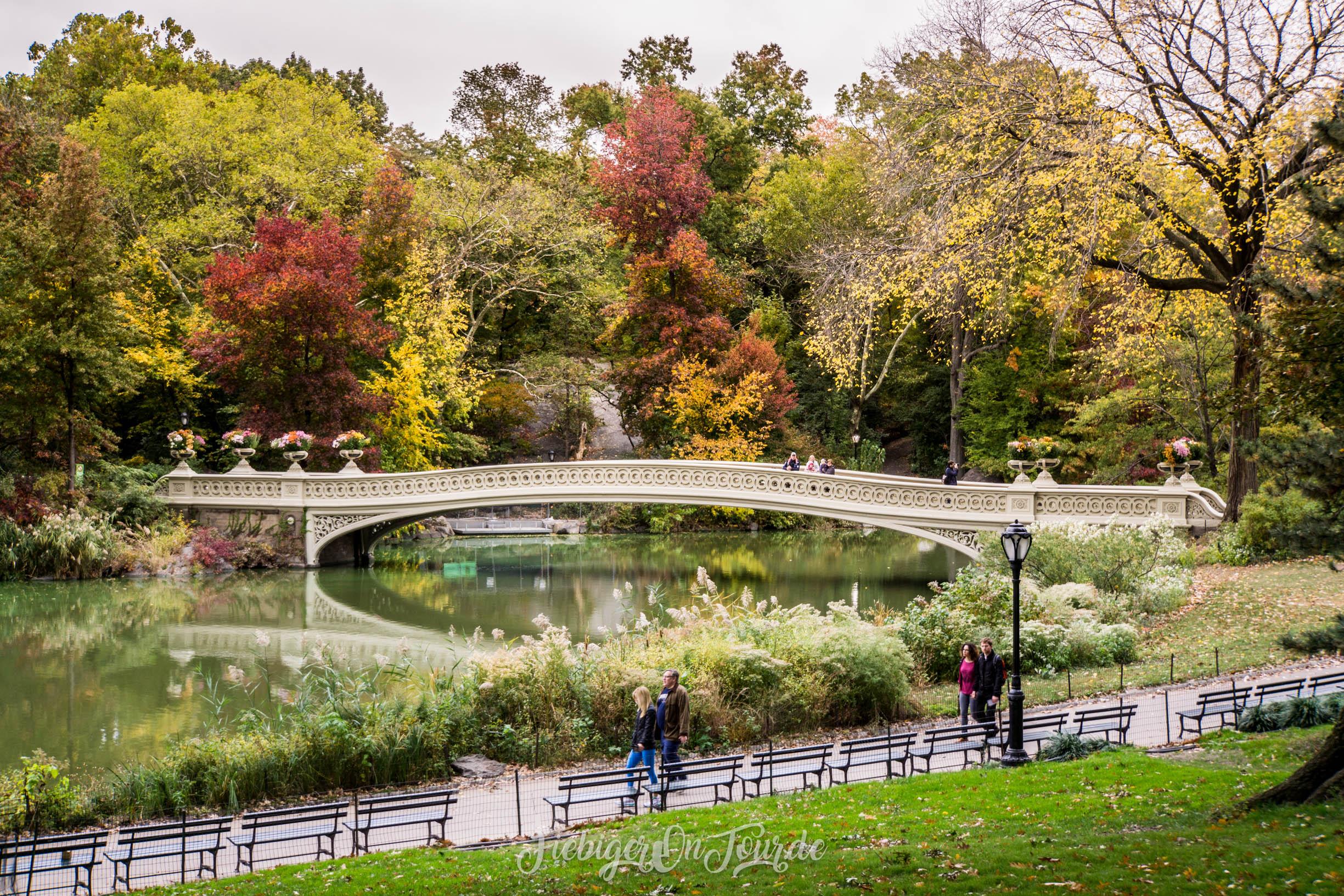 Central Park Bow Bridge-3